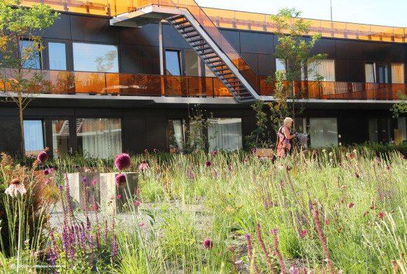 DELVA-Landscape-Architects-07-2015-Heel-Europa-VMX-architecten-tuinarchitect-purmerend-weidevenne-zorg-tuin-binnentuin-mindervalide-kinderen-terras-2a