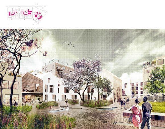 DLA-1-Buiksloterham-Cityplots-DELVA-Landscape-Architects-Studioninedots-Amsterdam-Antwerpen-openbare-ruimte-water-groen-hof-KLEIN